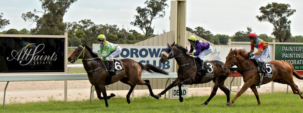 corowa race club